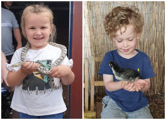 Meet the Animals - Show and Tell at the Hayrack Farm Park